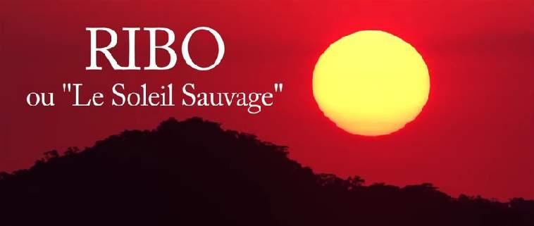 Ribo ou Le Soleil Sauvage est maintenant disponible sur Vimeo OnDemand